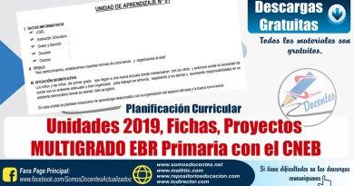 Programación, Unidades, Sesiones, MULTIGRADO PRIMARIA 2019, contenido adicional de fichas y materiales de trabajo, [Word]