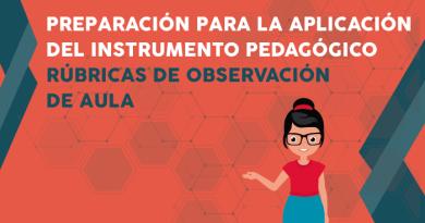 Curso Virtual, Preparación para la aplicación del instrumento pedagógico: Rúbricas de observación de aula, PERUEDUCA