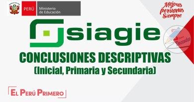 MINEDU: Conclusión Descriptiva en el marco del CNEB, Inicial, Primaria y Secundaria, [EJEMPLOS], www.minedu.gob.pe