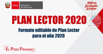 Plan Lector 2020, formato editable (WORD) – Referencial