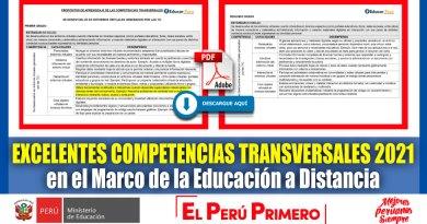 IMPORTANTE: Excelentes COMPETENCIAS TRANSVERSALES 2021 en el Marco de la Educación a Distancia [Descarga aquí]