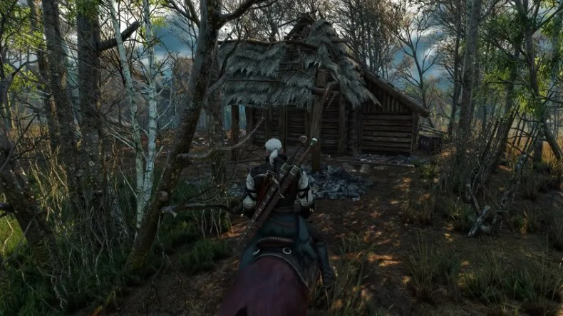The_Witcher_3_4-3.r
