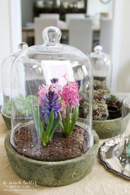 Spring flowers in terrarium |somuchbetterwithage.com