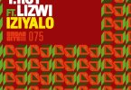 T. Roy & Lizwi - Iziyalo (Cee ElAssaad Voodoo Remix)