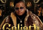 Dladla Mshunqisi Goliath ft. DJ Tira, Busiswa & Dlala Thukzin