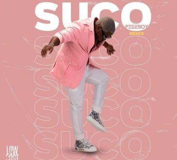 Dj Pzee Boy - Suco (Remix)