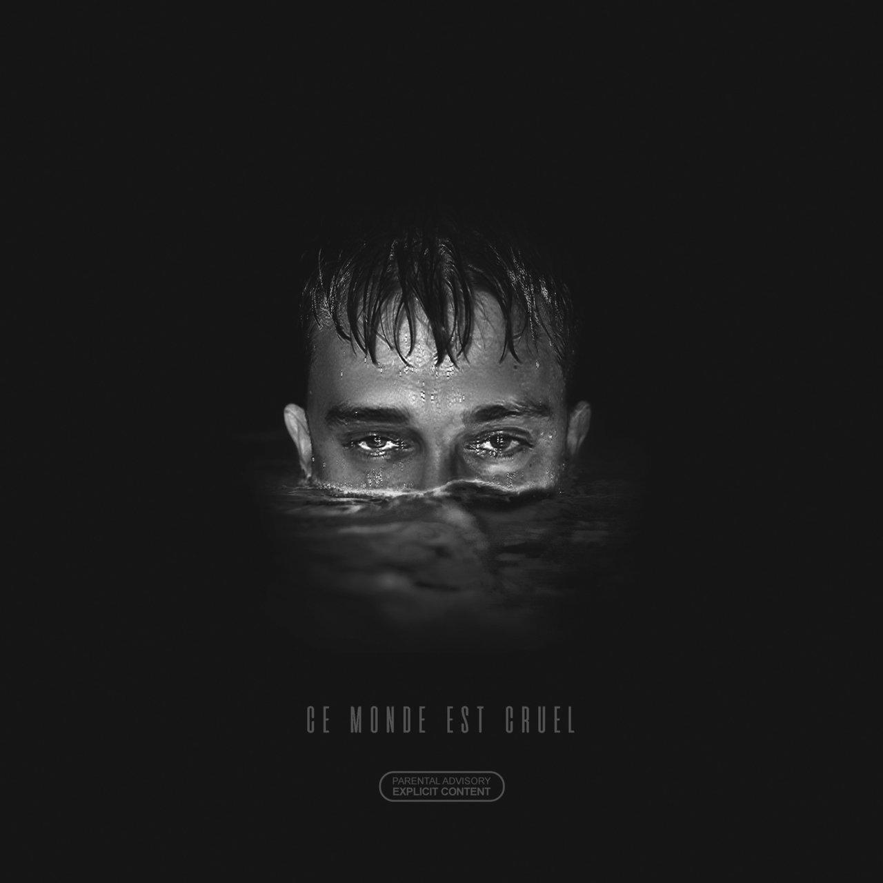 Vald - Ce Monde Est Cruel (Cover)