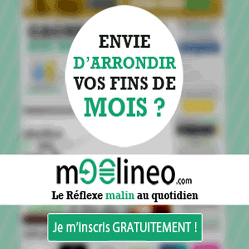 Site web moolineo