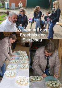 Eierschau