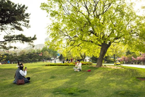 a-corner-of-the-xinghai-park