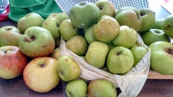 ALT=apples