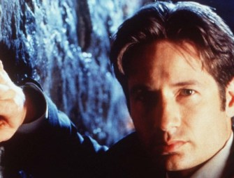 X-Files star David Duchovny likens his debut album to R.E.M. and Wilco