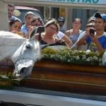 Cavalo comove família de vaqueiro morto ao se despedir do dono