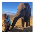 Grazi Massafera posa com a filha ao lado de elefante