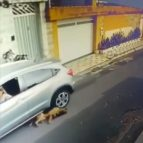 Enfermeira é suspeita de atropelar cachorros em São Luís; vídeo repercute nas redes sociais
