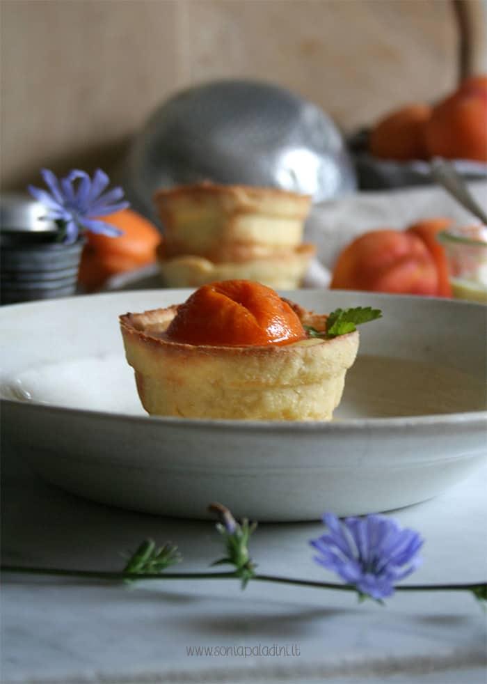 Crostatina_albicocche_torta