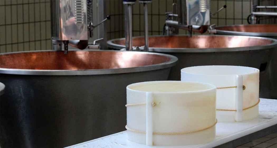 Il Parmigiano le fasi della lavorazione