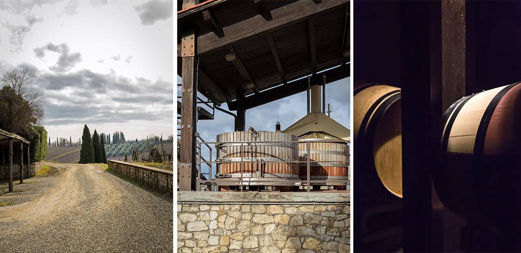 il vino Castello di Ama