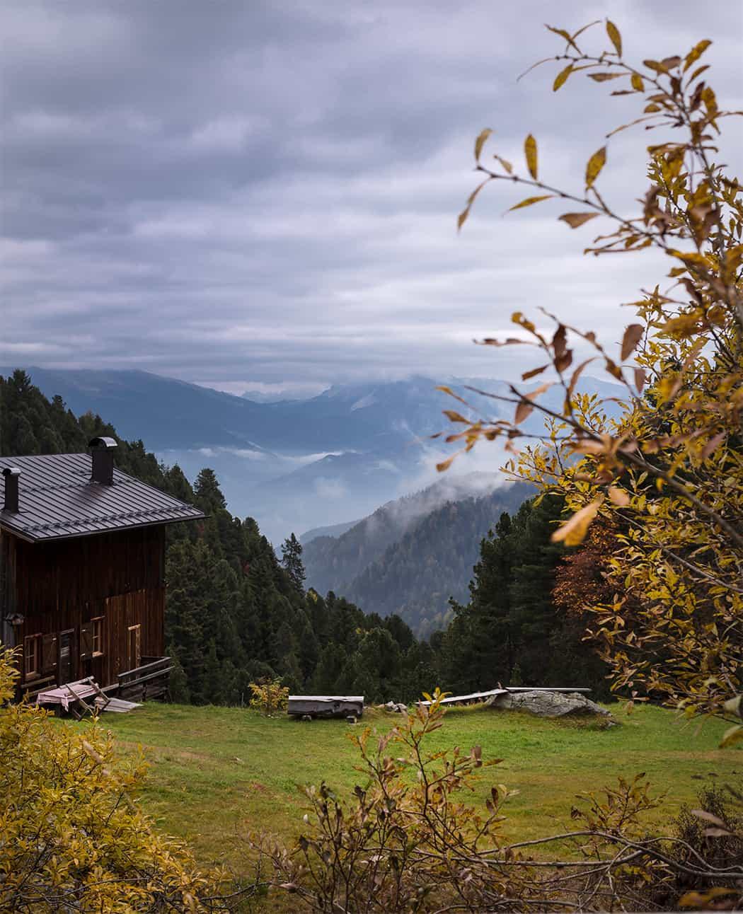 i masi dell'Alto Adige