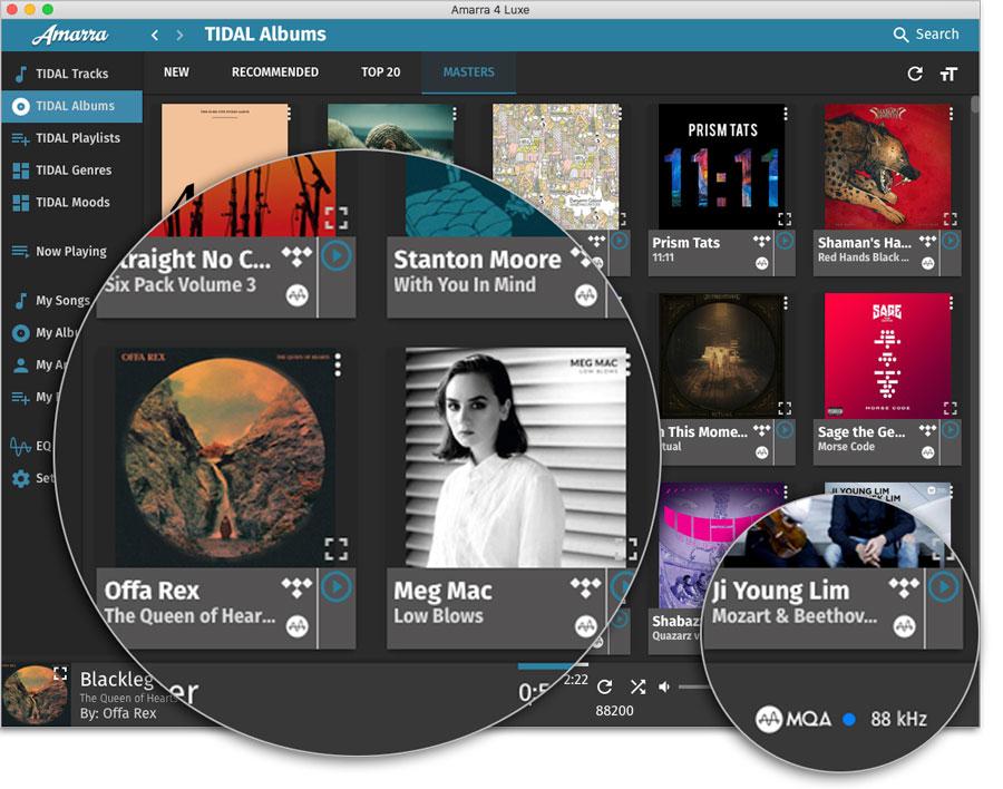 Amarra Luxe 4.3.510 Mac 破解版 - 音乐增强播放器