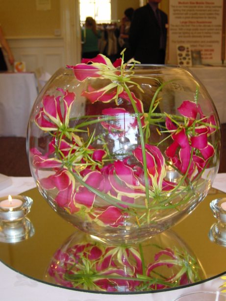 Gloriosa fishbowl