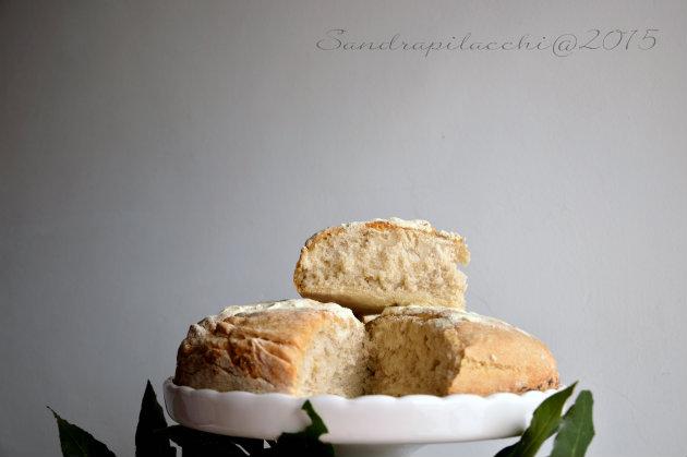 Panis Siligineus Flores: il pane come lo mangiavano a Pompei