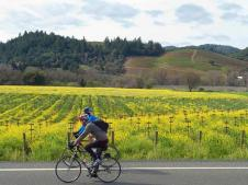 , Things To See and Do in Sonoma County
