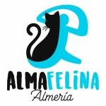 alma-felina-almeria