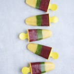 Tricolor Ice Pops & Cookbook Review