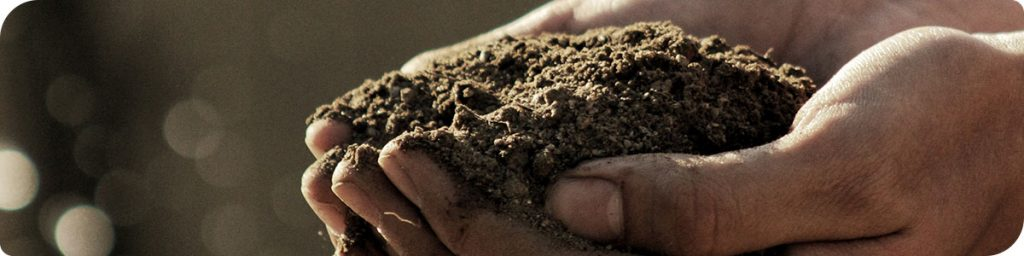 Hands holding a pile of planting soil
