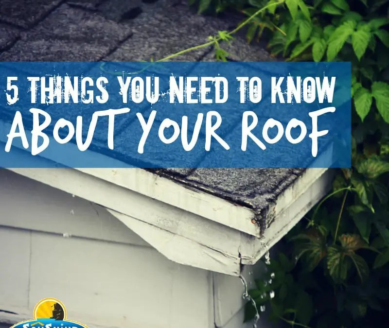 5 Things You Need to Know About Your Roof