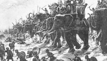 war-elephants