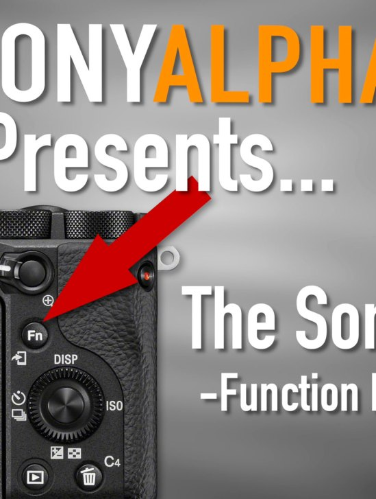 Sony A6600 and The Function Menu (Fn) - How To Use and Customize...