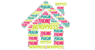 Theme vs Plugin