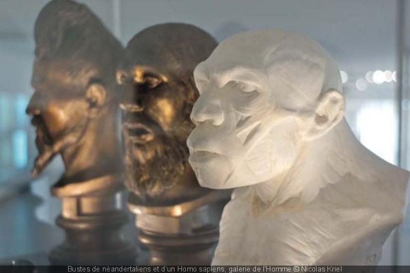 323817-neandertal-la-grande-expo-au-musee-de-l-homme