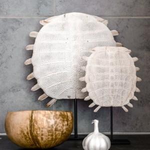 Turtle Shell Sooka Interior
