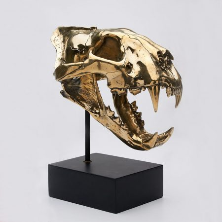 Sumatran Tiger Skull in Polished Bronze