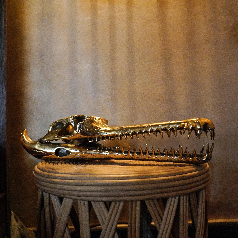 Bronze Gharial Skull Sooka Interior