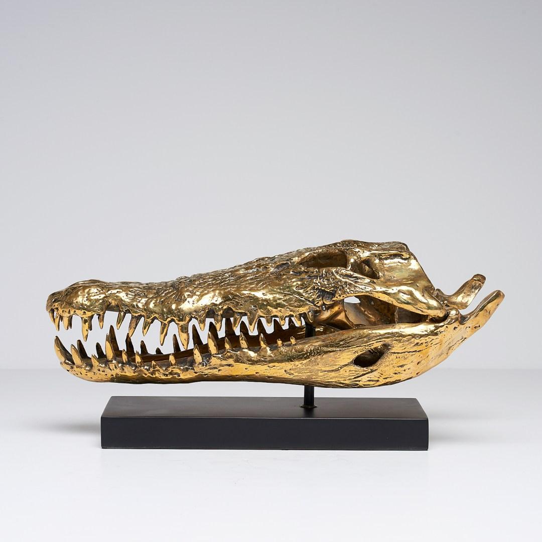 Bronze Saltwater Crocodile Skull Sooka Interior