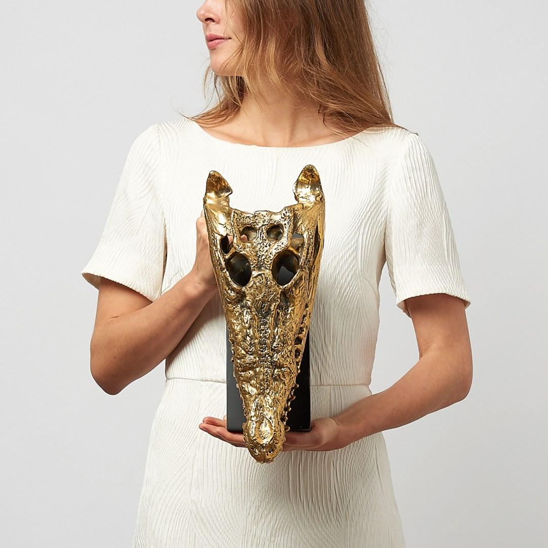 Medium Saltwater Crocodile Skull in polished bronze