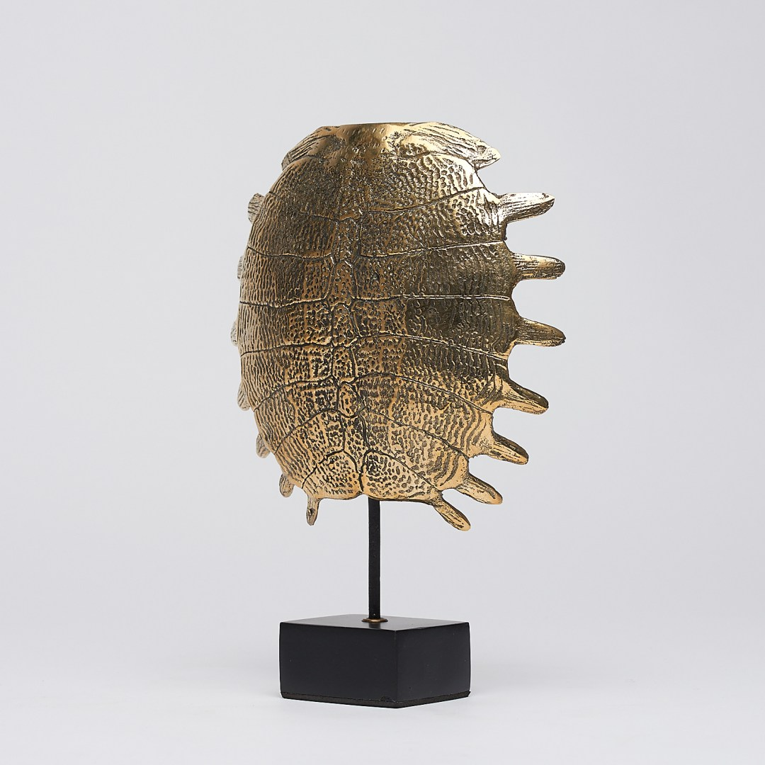 small Turtle Shell in polished bronze
