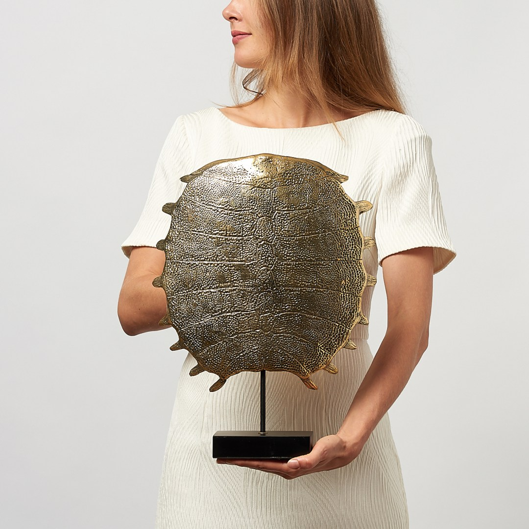 large turtle shell in polished bronze