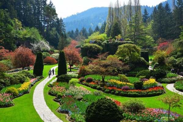Image Courtesy of Butchard Gardens