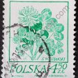 Dibujo de trébol estampilla de Polonia 1974