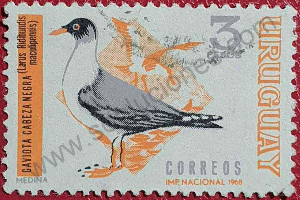 Gaviota 3$ - Sello Uruguay - Ave - Pájaro 1969