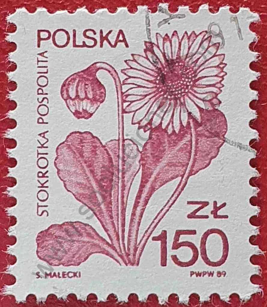 Sello con flor Margarita - Polonia 1989