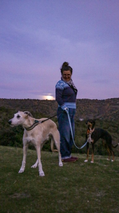 walking the hounds at moonrise