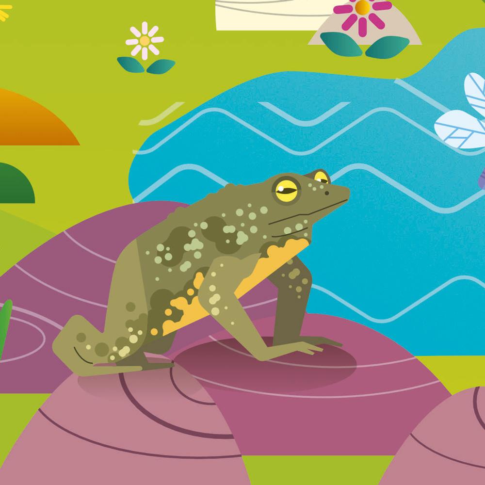 Illustration parc naturel régional du Pilat