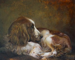 """Portrait of a Spaniel, Oil on panel, 30x25cm/12x10"""". Available"""