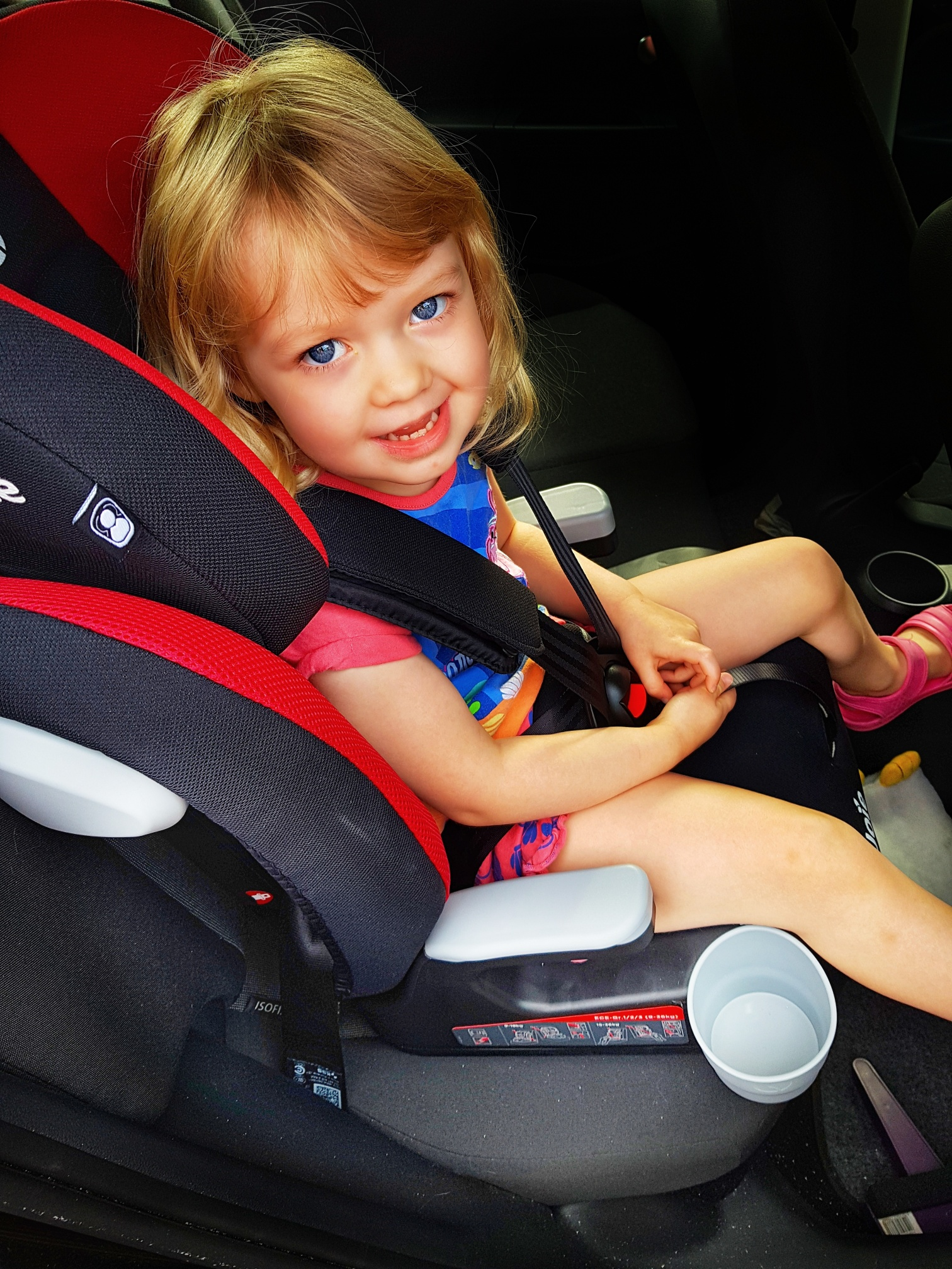 2a34cc1aa3fe Joie Elevate Group 1/2/3 Car Seat Review - Sophie's Nursery